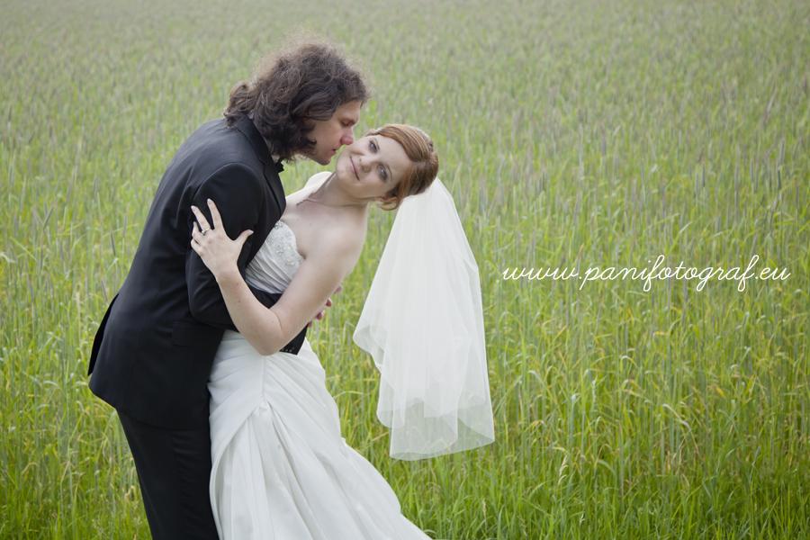 zdjęcia ślubne 1