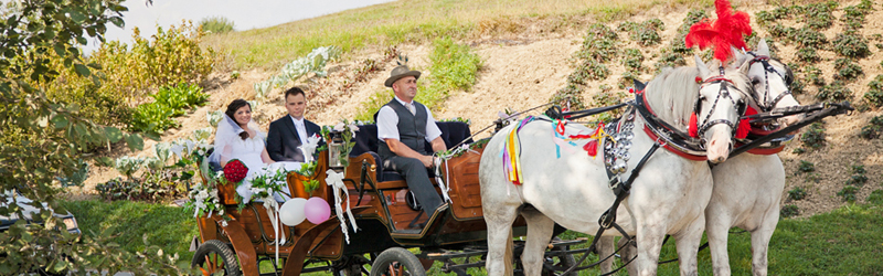 foto reportaż ślubny